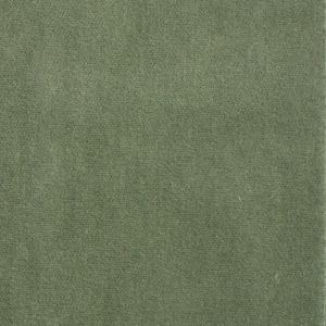 S1061 Balsam Greenhouse Fabric