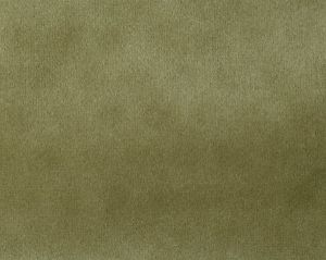 A9 0009T019 SAFETY VELVET Plaza Taupe Scalamandre Fabric