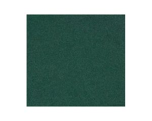 A9 00307690 THARA Hunter Green Scalamandre Fabric