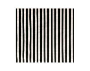 A9 05017705 DRESS CODE Black White Scalamandre Fabric