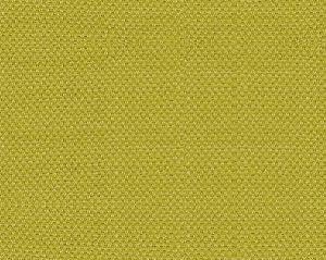 B8 00030110 SCIROCCO Ginko Scalamandre Fabric