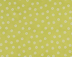 B8 00030597 POPPINS Lime Jello Scalamandre Fabric