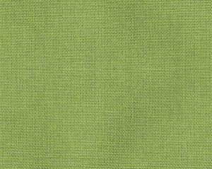 B8 00035730 TAOS BRUSHED WIDE Ginko Scalamandre Fabric