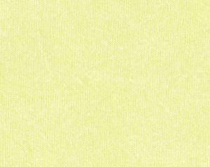 B8 0005681A STONE Lemon Scalamandre Fabric