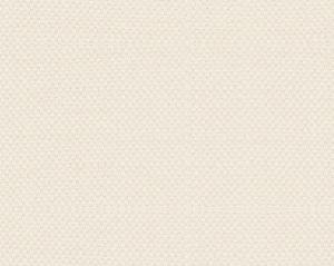B8 00072785 SCIROCCO WIDE Lace Scalamandre Fabric