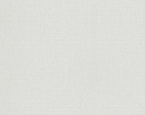 B8 00077112 ASPEN BRUSHED Paper White Scalamandre Fabric