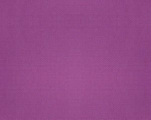 B8 00197112 ASPEN BRUSHED Orchid Scalamandre Fabric