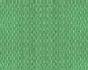 B8 00231100 ASPEN BRUSHED WIDE Aventurine Scalamandre Fabric