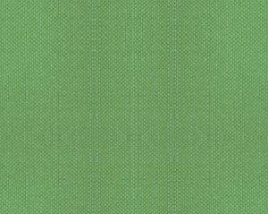 B8 00331100 ASPEN BRUSHED WIDE Apple Green Scalamandre Fabric