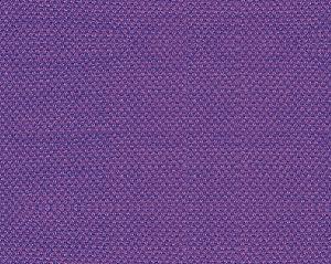B8 00392785 SCIROCCO WIDE Petunia Scalamandre Fabric