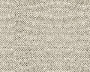 B8 00762785 SCIROCCO WIDE Shell Scalamandre Fabric