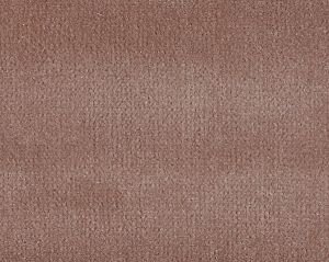 CH 02024002 VISCONTE II Allium Scalamandre Fabric