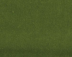 CH 02244002 VISCONTE II Lettuce Scalamandre Fabric