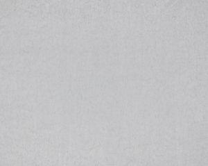 CH 03054493 TITAN Silver Scalamandre Fabric