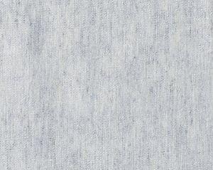 CH 05054355 TRAMONTANA Silver Scalamandre Fabric
