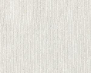 CH 05074355 TRAMONTANA Cream Scalamandre Fabric