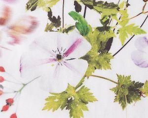 CH 06084416 SOMMERWONNE CS Summer Bouquet Scalamandre Fabric