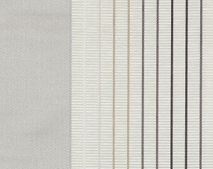 CH 08174228 MULTIPLE Shell Scalamandre Fabric