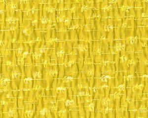 CL 000326729 MAMBO Yellow Scalamandre Fabric