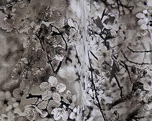 H0 00013468 SAKURA Naturel Scalamandre Fabric