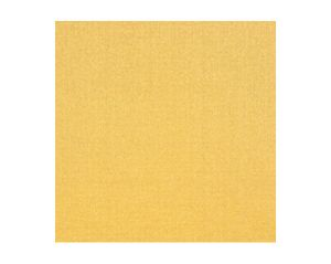 H0 00021628 EMOTION Or Scalamandre Fabric