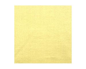 H0 00221628 EMOTION Tilleul Scalamandre Fabric