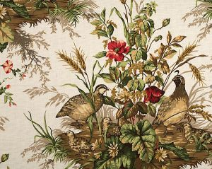16310-001 EDWIN'S COVEY Multi On White Scalamandre Fabric