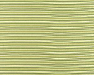 WR 00032661 STEPS BEACH Grass Old World Weavers Fabric