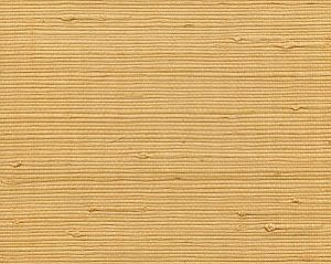 WTW AT1035 TIGHT WOVEN JUTE Banana Scalamandre Wallpaper