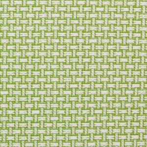 2016106-23 BEACH BASKET Palm Green Lee Jofa Fabric