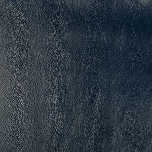 SECRETARIA-50 SECRETARIAT Kravet Fabric