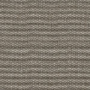 31870-11 AVEC AMOUR Silver Kravet Fabric