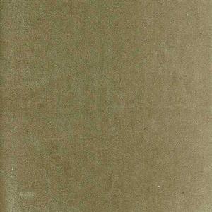 AM100111-16 PELHAM Fawn Kravet Fabric
