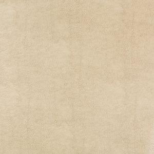 BEHOLDER-116 Kravet Fabric