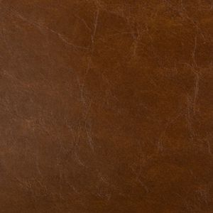 LIPIZZAN-6 Saddle Kravet Fabric