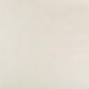 HUBBLE-111 Kravet Fabric