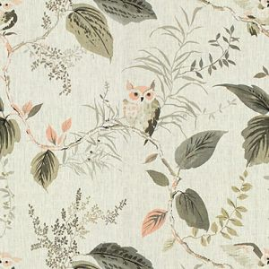 OWLISH-11 Blush Kravet Fabric