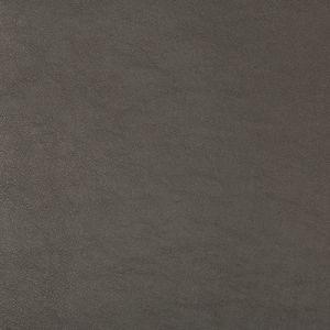 SWAPS-21 Kravet Fabric