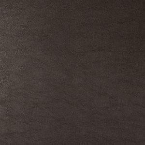 SWAPS-66 Kravet Fabric