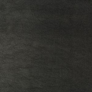 SWAPS-8 Kravet Fabric