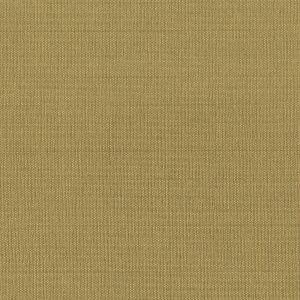 GORGEOUS 24 Lion Stout Fabric