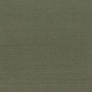 GORGEOUS 44 Slate Stout Fabric