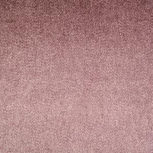 JARVIC 14 Tearose Stout Fabric