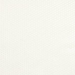 NEPHEW 1 Vanilla Stout Fabric