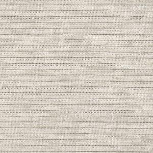 SAPOTA 1 Pumice Stout Fabric