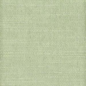TUESDAY 3 Seafoam Stout Fabric