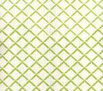 302308F TERRACE New Apple on Tint Quadrille Fabric