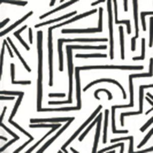 AP204-8 LASCAUX Black On White Quadrille Wallpaper