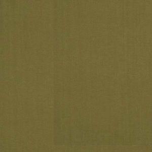 LAZAR Pistachio Stroheim Fabric