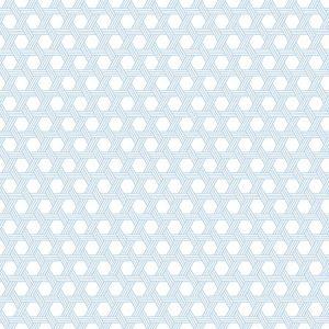 LN10202 Cabana Wicker Carolina Blue and Eggshell Seabrook Wallpaper